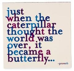 just-when-the-caterpillar-thought-the-world-was-over_medium