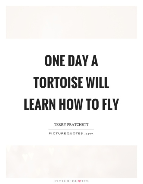 one-day-a-tortoise-will-learn-how-to-fly-quote-1